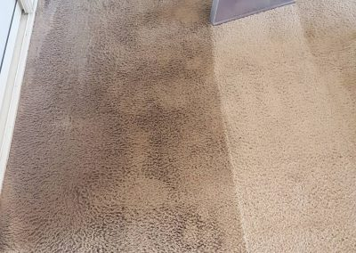 carpet steam clean being done on dirty carpet the butler clean co gatton